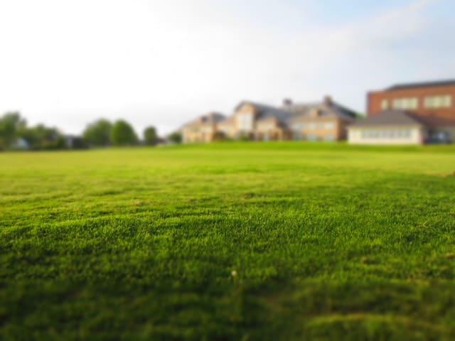 beautiful estate planning